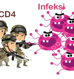 CD4 adalah Prajurit Yang Melawan Virus