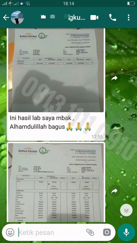 Review Teraphy Herbal De Nature Hasil Nonreaktif