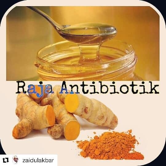 Mengatasi daya tahan tubuh lemah dengan antibiotik herbal