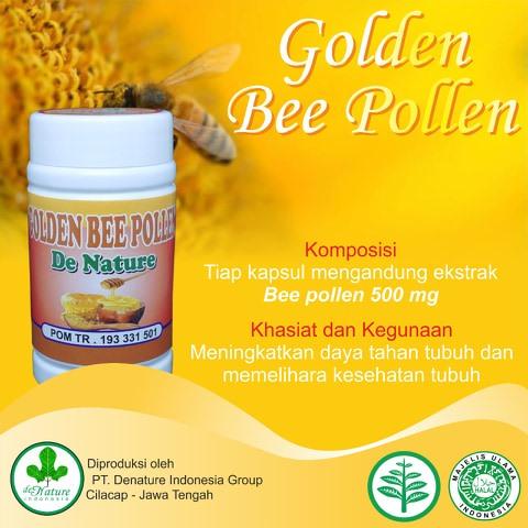 Bee Pollen Vitamin kekebalan tubuh yang bagus