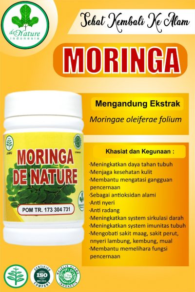 moringa vitamin kekebalan tubuh yang bagus