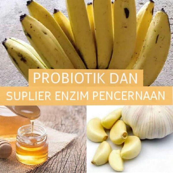 Mengatasi daya tahan tubuh lemah dengan Prebiotik Alami
