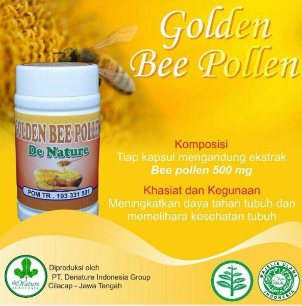 Bee Pollen Serbuk Sari Lebah Superfood
