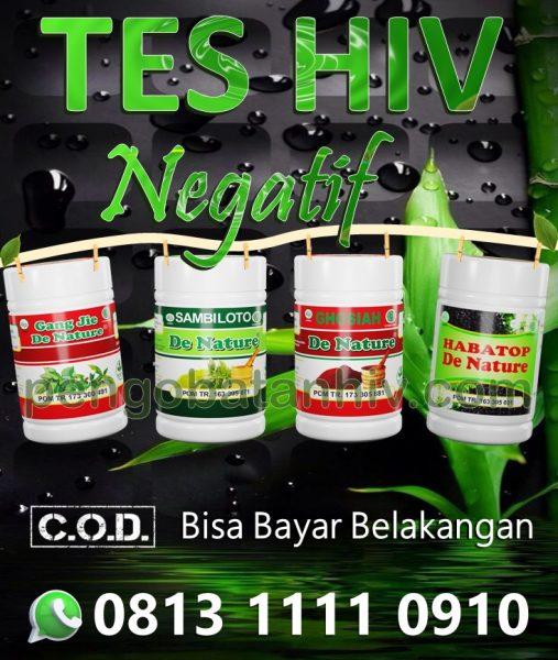Obat Hiv Aids Herbal Tanpa Efek Samping Untuk Meningkatkan Sistem Imunitas Tubuh